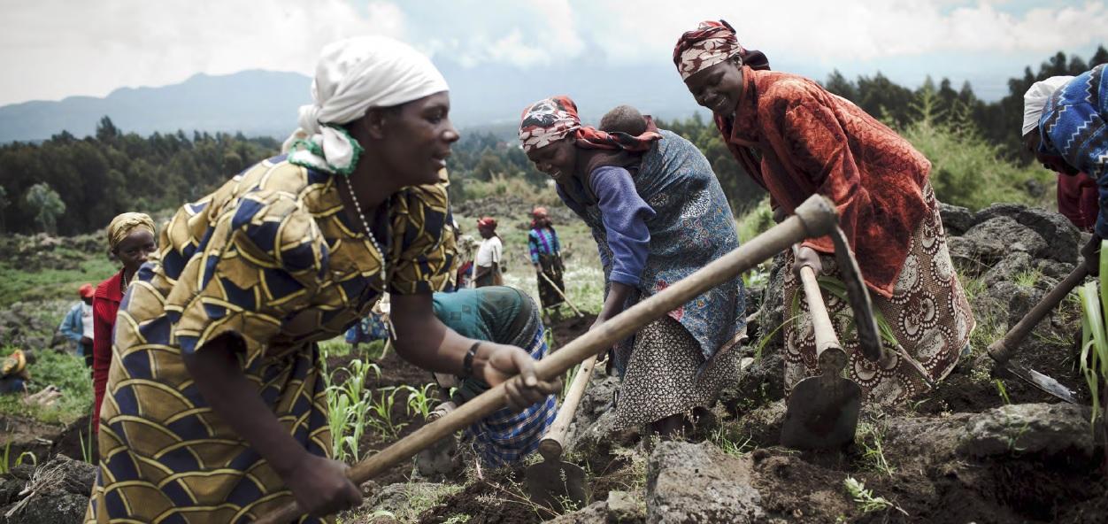 Le CMR : pour une déclaration des droits des paysan-nes