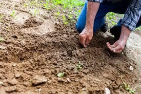 Quelle solidarité avec le monde agricole ?